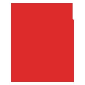 formulario-icone